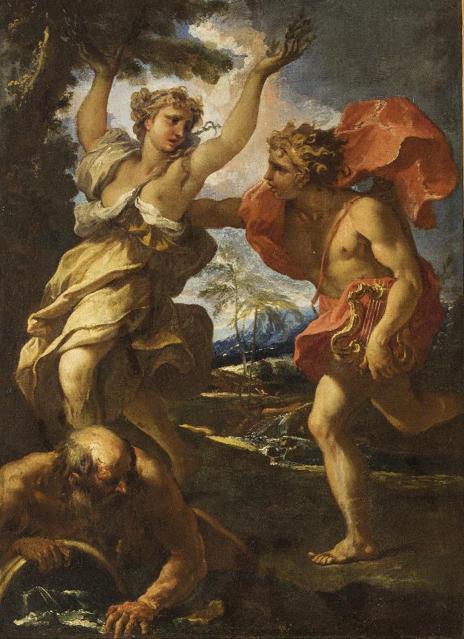 Sebastiano Ricci Apollo e Dafne, olio su tela, cm 100 x 73 Stima € 5.000 – 8.000