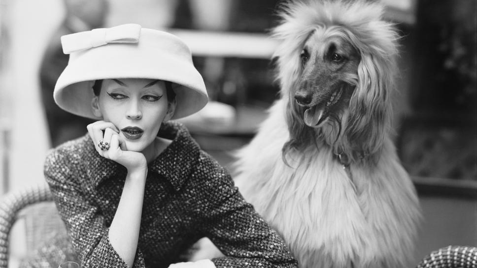 Balenciaga_Café_des_Deux_Magots_Paris_1955