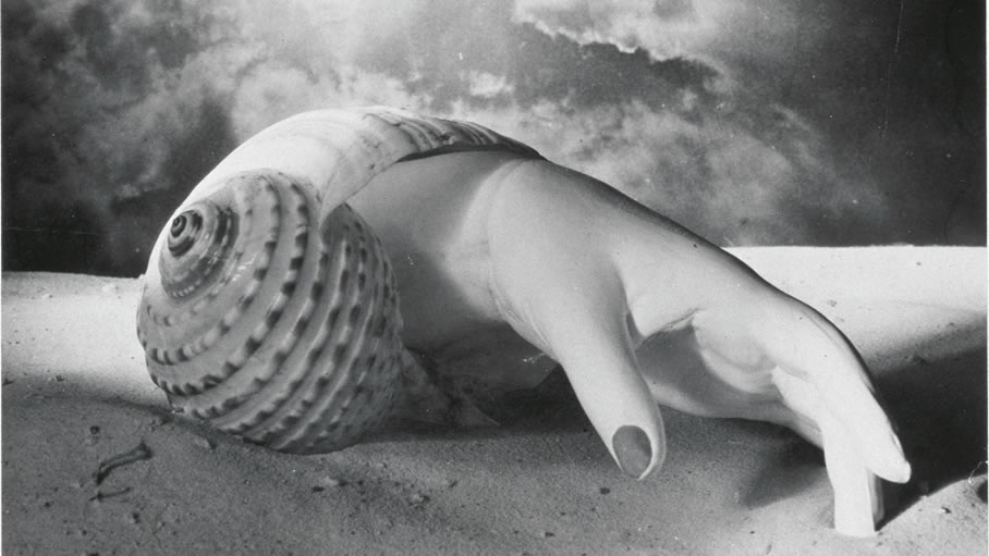 DORA MAAR AND THE DREAM OF A VISION